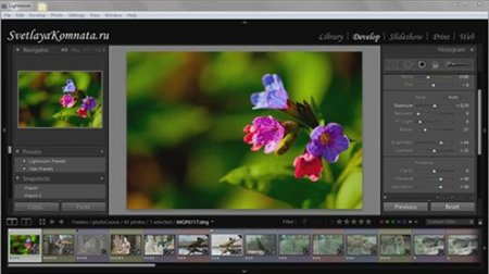 Видеокурс: Lightroom 2 на русском(Full Version) 32 урока